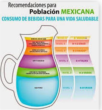 Recomendaciones para la Población Mexicana en el Consumo de Bebidas para una Vida Saludable