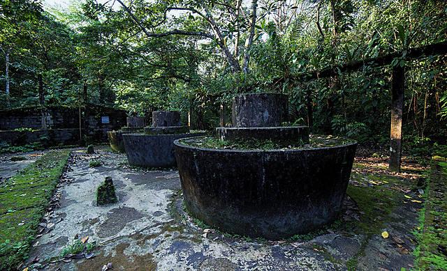 """1984 """"Gorgona Ecological Sanctuary"""""""