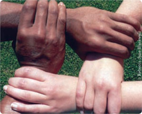 Convention eliminating racial discrimination .