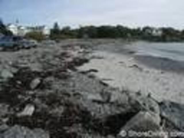 white men finally retern to roanoke island