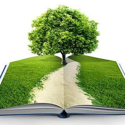 Antecedentes históricos de la educación ambiental. timeline