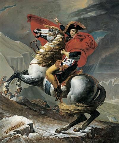 Napoleons Fall
