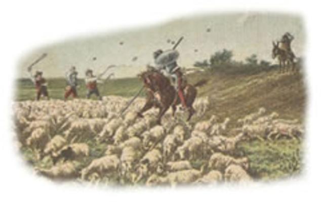 Don quijote vs las ovejas