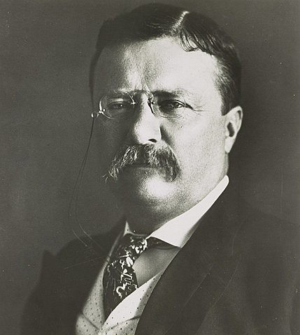 Theodore Roosevelt's Election as President of the United States
