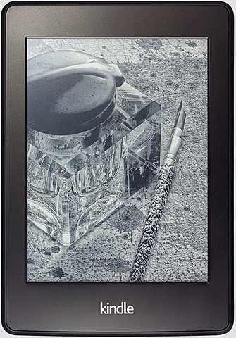 Kindle Paperwhite 2nd generation.