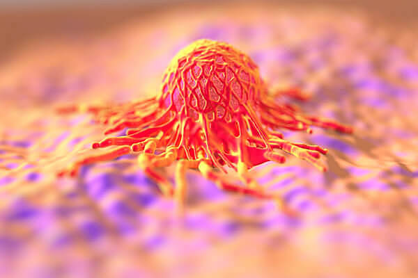 Major breakthrough in cancer research.