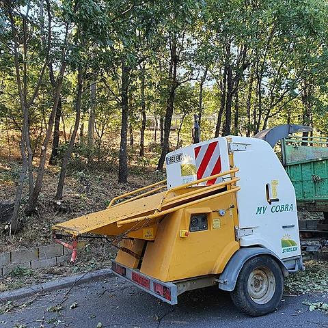 Tratamientos silvícolas de prevención de incendios forestales