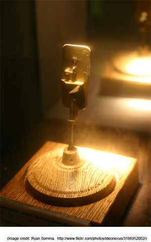 """""""The first microbiologist"""": Antony van Leeuwenhoek, a Dutch cloth maker, and amateur lens grinder,  observes live individual bacteria and protozoa using his homemade microscope."""