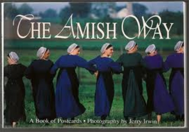 Amish children are exempted from school after 8th grade.