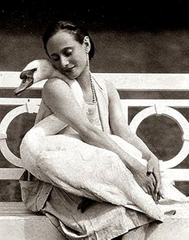 The Swan/ Dying Swan