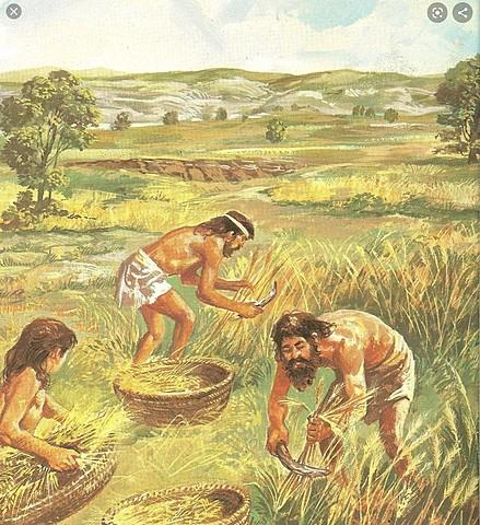 Neolítico ( 6500 A.C- 5000 A.C )