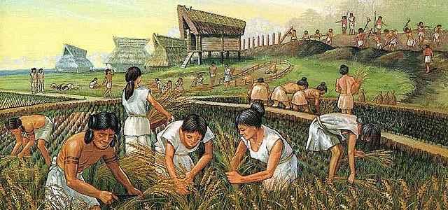 Rivoluzione agricola(8000 aC)