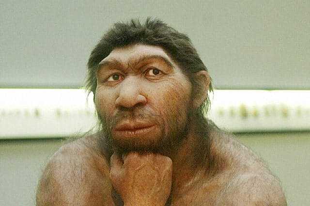 Homo di Neanderthal (300000 di anni fa)