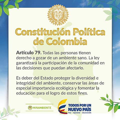 Incorporación de principios ambientales en la constitución del 91