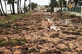Huracan Iota por el archipiélago de San Andres, Providencia y Santa Catalina.