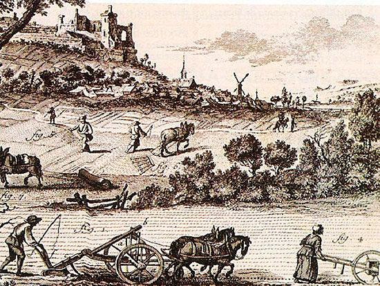 Agricultura de subsintencia