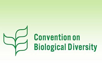 El Convenio sobre la Diversidad Biológica
