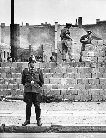 Berlinermuren blir bygget