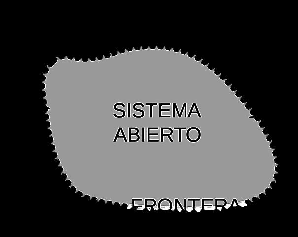 1932 -1937 : Teoria de Sistemas Abiertos