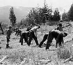 Civilian Conservation Corps Begins