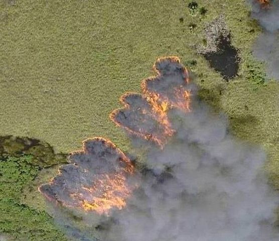 Using Fire To Reduce Hazardous Fuels