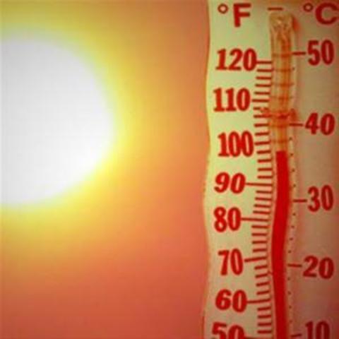 Η πρώτη έκθεση αξιολόγησης της IPCC καταλήγει στο συμπέρασμα ότι οι θερμοκρασίες έχουν ήδη αυξηθεί κατά 0.3-0.6 βαθμούς Κελσίου κατά τον τελευταίο αιώνα, εξ αιτίας των ανθρωπογενών εκπομπών του διοξειδίου του άνθρακα.
