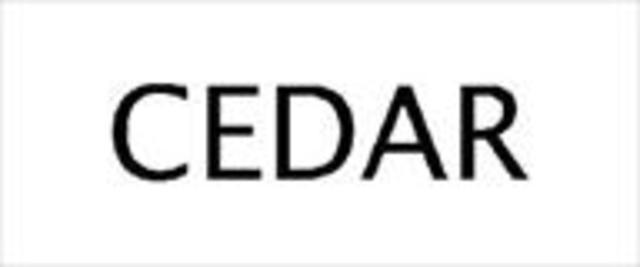 CEDAR Audio develops a Noise Reduction stystem