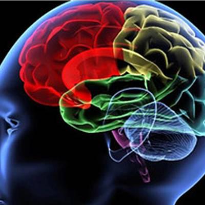 La Neuropsicología en el tiempo timeline