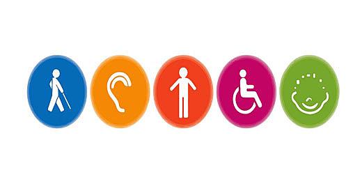 Sistema Nacional de Discapacidad - Ley 1145