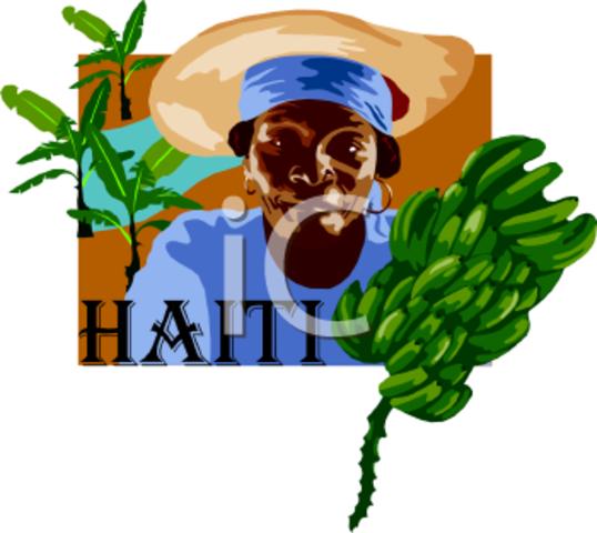 Resolución 806 Haiti