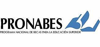 PRONAES) estableció un subprograma denominado Programa Nacional de Posgrado