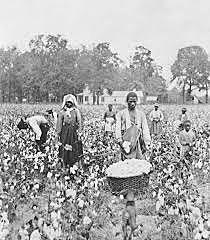 Sharecropping Begins in the South