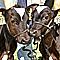 Клонировали мышь и корову