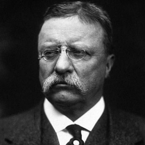Teddy Roosevelt as President