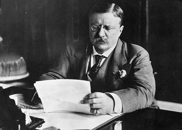 Theodore Roosevelt for President