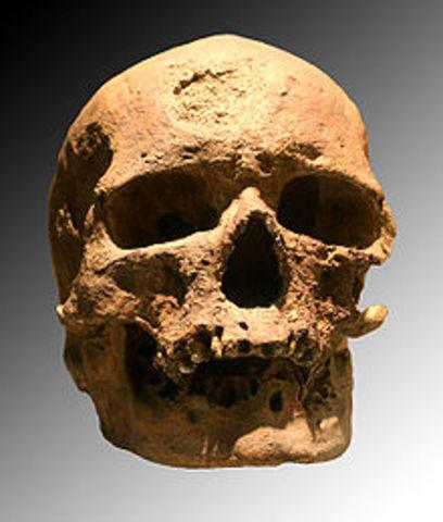 Cro- Magnons, 40,000 to 8,000 B.C.