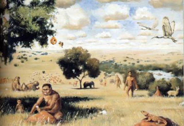 Neolithic Revolution, 8,000 B.C.