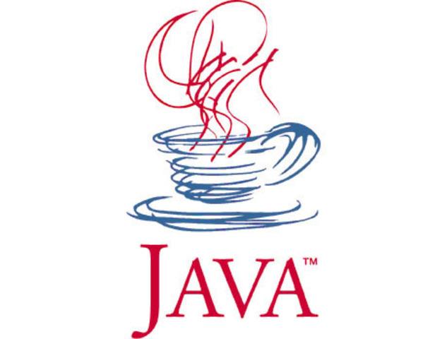 Java Programming Language (Software Developments)