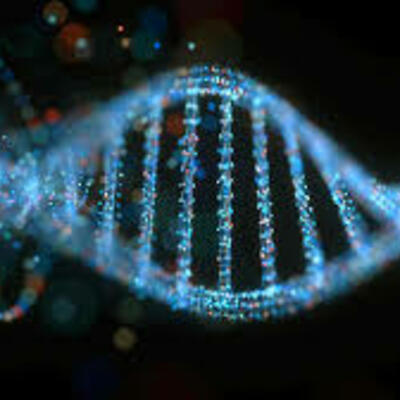 DNA denbora lerroa timeline
