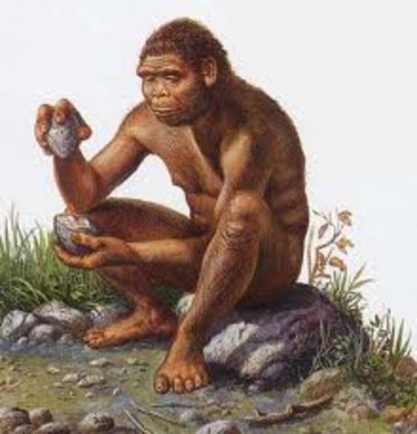 Homo habilis appear, 2.5 million B.C.