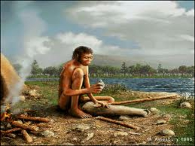 Homo Erectus Appears, 1.6 million B.C.