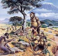 Aparició dels primers homínids