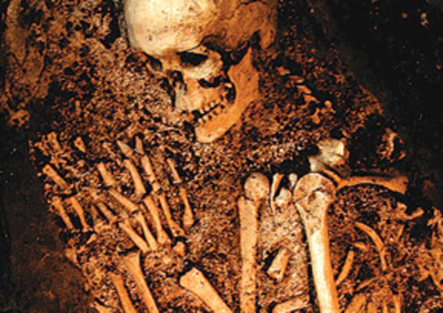 Neanderthal bone fossils discovered, 1856