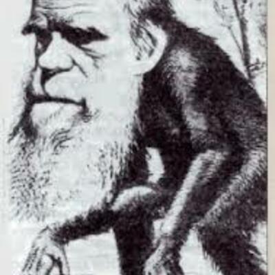fijistas y evolucionistas timeline