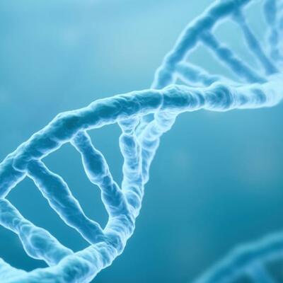 línea del tiempo de la historia del descubrimiento y descripción de la estructura del ADN. timeline