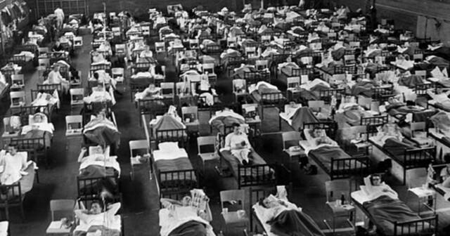 Pandemia de gripe