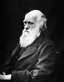 Charles Darwin Inglaterra