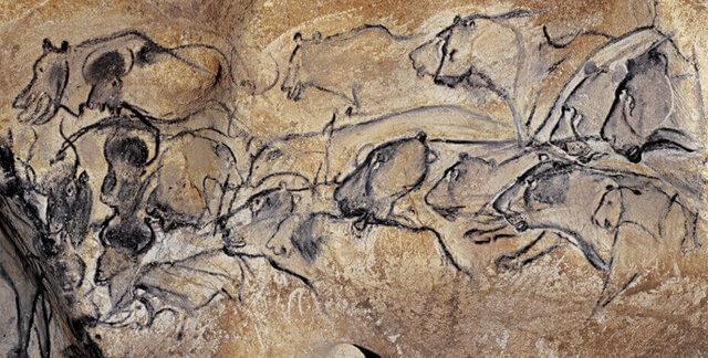 Ciclo dei leoni