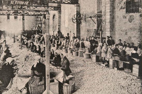 Industrializació França