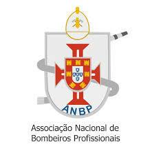 Associação Nacional de Bombeiros Profissionais